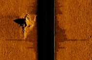 The sonar image of Gaston's plane, 2014.